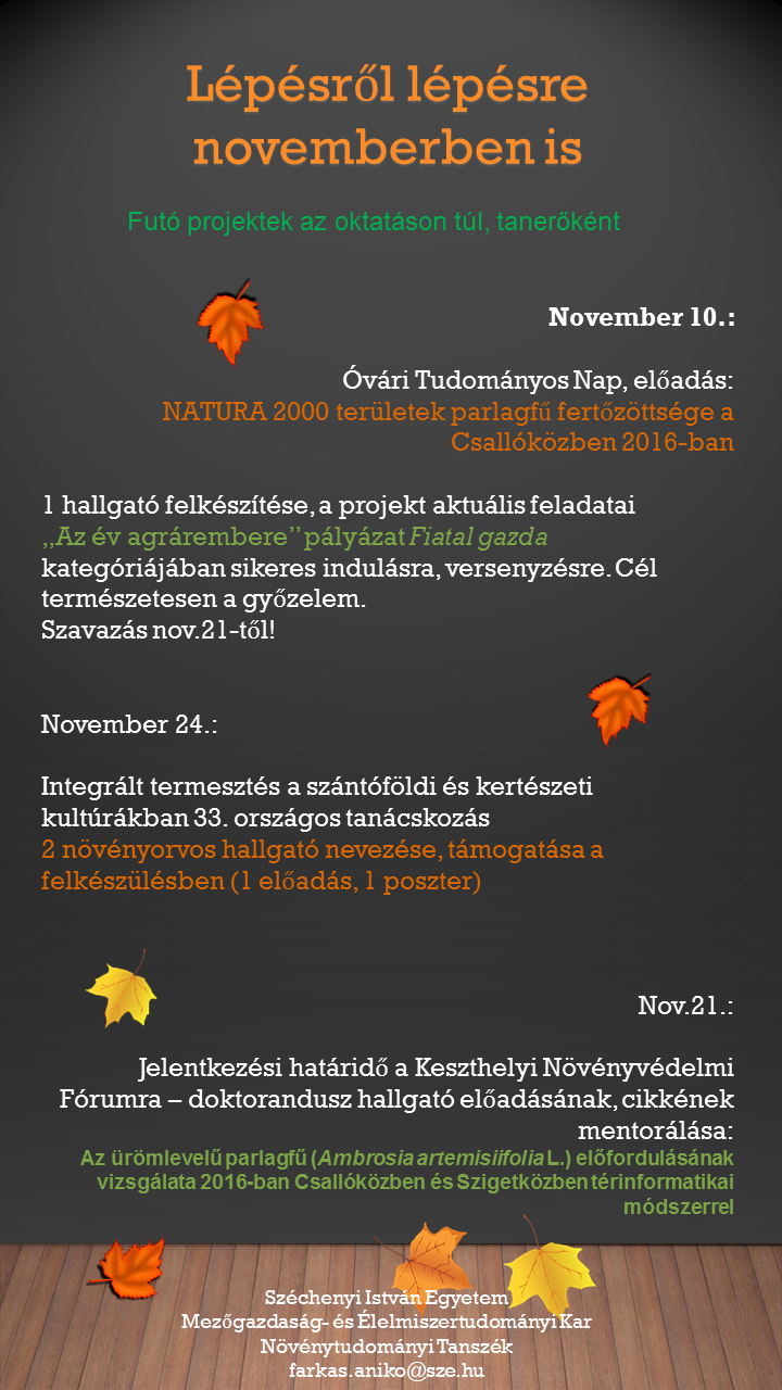 novemberi leltár